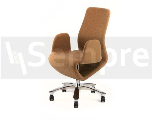 Toronto Meeting Chair (Brown)